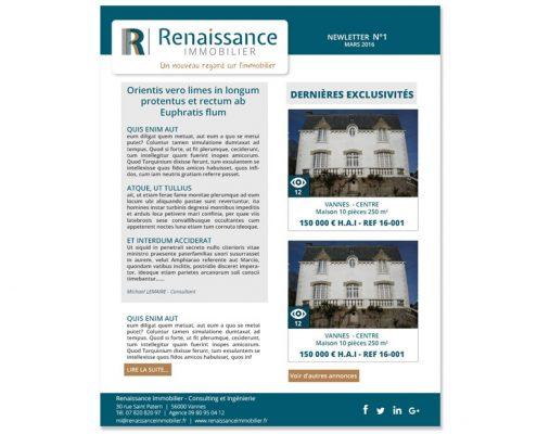 design newsletter - renaissance immobilier