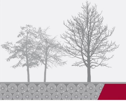 Webdesign - Site élagueur Morbihan